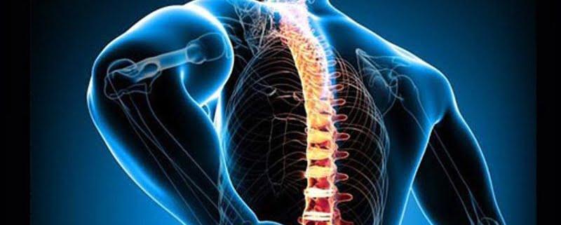 Alpharetta Spinal Cord Injury Lawyer